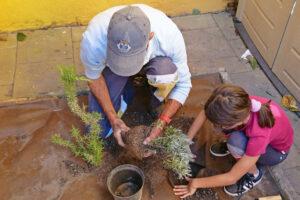 Seja Jardineiro Por Um Dia | 2019 | Escola Básica dos Arcos