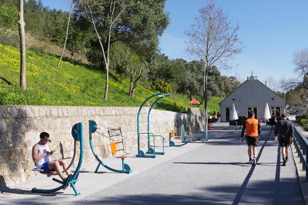 Parque Urbano de Albarquel