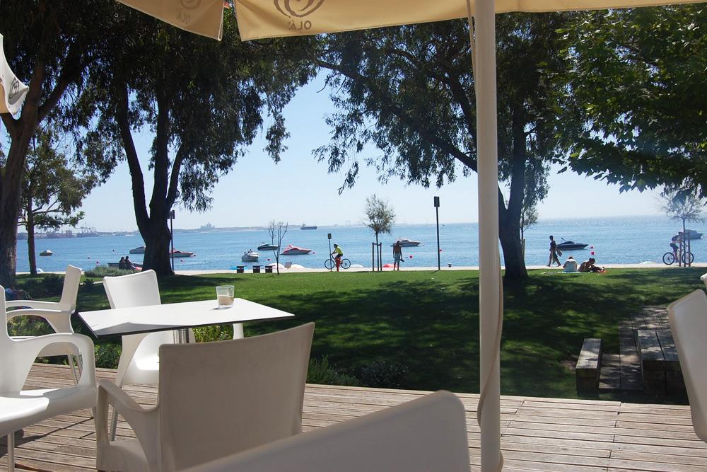 Bar/Cafetaria Parque Urbano de Albarquel