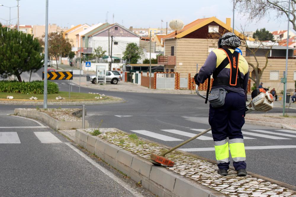 Controlo de infestantes - Junta de Freguesia de São Sebastião