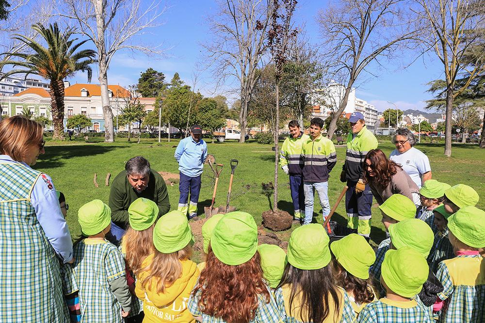 Dia Mundial da Árvore_Plantação_Árvores_Jardim_Bonfim_2019_04
