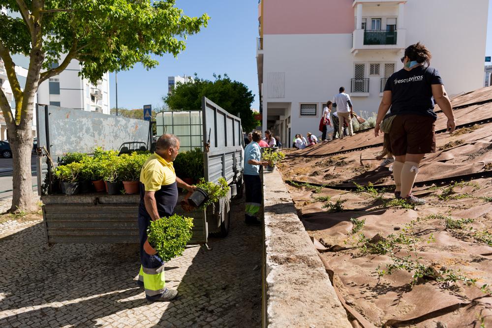 Jardineiro Por Um Dia - Freguesia de São Sebastião