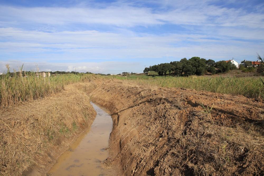 Limpeza de valas e linhas de água - 2019