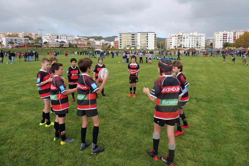 Campo do Club de Rugby de Setúbal - Algodeia - início de atividade