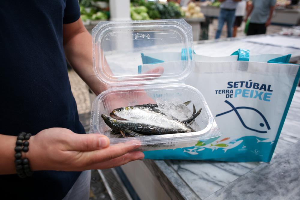 Semana da Sardinha 2020 | Setúbal Terra de Peixe