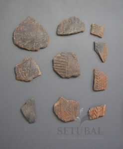 Museu ao Seu Encontro | Fragmentos de cerâmica campaniforme