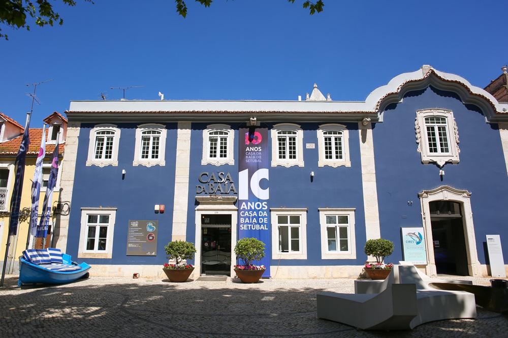 Comemorações do 10.º aniversário da Casa da Baía - Zé Zambujo